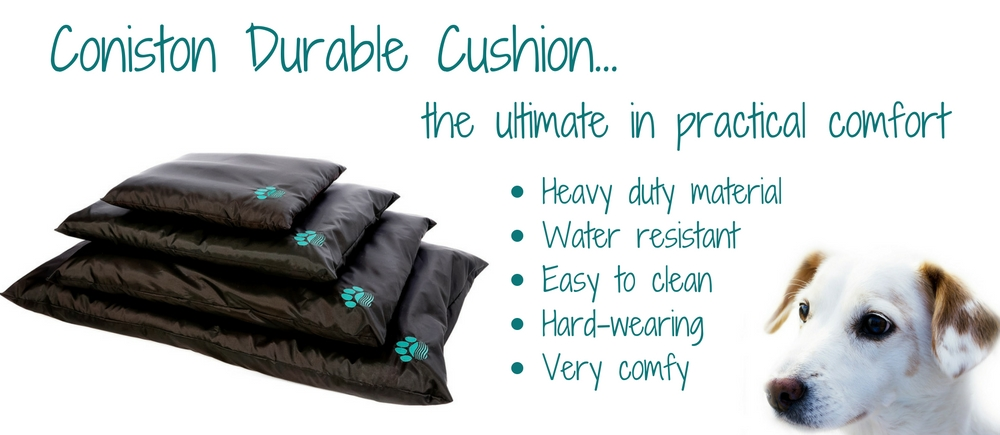 Coniston durable cushion.jpg